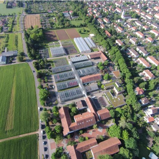 Die LVG Heidelberg stellt sich vor