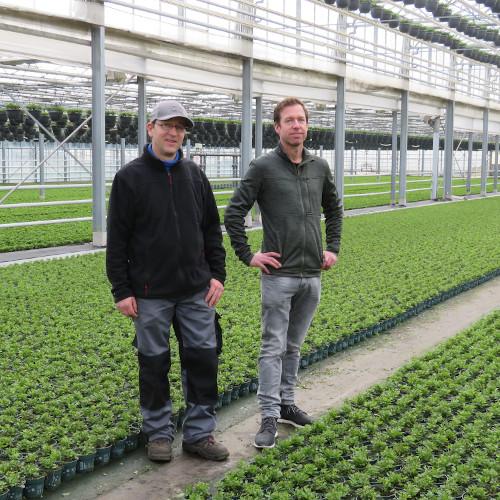 Gartenbau Stefan Gerritzen